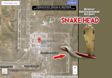 DIA_Snake head_JPG